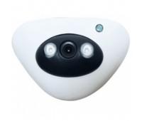 AM15-200E IP Mini Array Camera, Пластик, 2 MP 1080P, 3,6mm линза, IR-15m